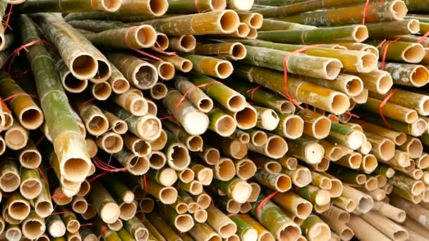 Round cross sliced bamboo trunk bundles in stack prepared for use as a building construction material in asia. Natural texture. Pile of cutted trees. Deforestation concept. decor and furniture source