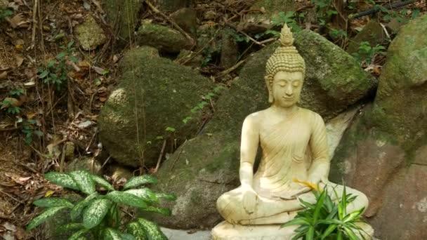 Socha Buddhy v nádherné zahradě. Krásná soška Buddhy, umístěná poblíž mechem balvanů a zelených rostlin v nádherné tiché zahradě.