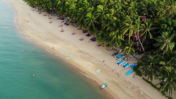 Blue lagoon and sandy beach with palms. Aerial view of blue lagoon and sun beds on sandy beach with coconut palms and roof bungalows.
