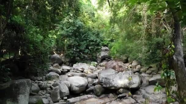 Magical scenery of rainforest and river with rocks. Wild vegetation, deep tropical forest. Jungle with trees over rocky rapids. Steam with stone cascades flows through exotic woods drone view