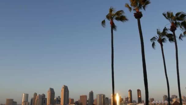 Metropolis urban skyline, highrise skyscrapers, San Diego Bay, California USA. Pacific ocean harbour in sunset light, view from Coronado island. City downtown buildings and silhouettes of palm trees
