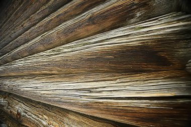 texture background old logs/abstract gray nature background;