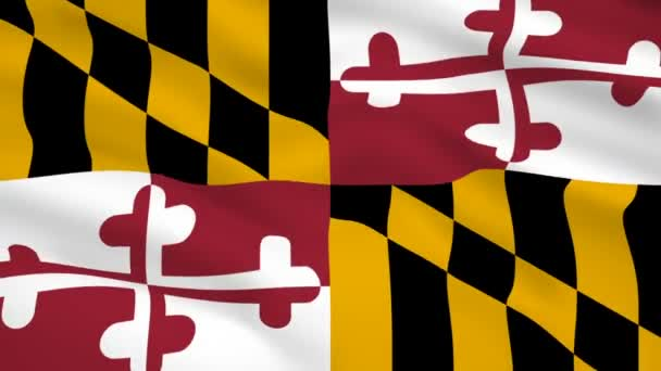 Maryland USA flag waving in the wind