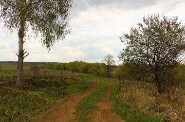 Rural dirty road view
