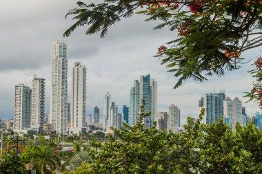 Skyline of Panama City on background