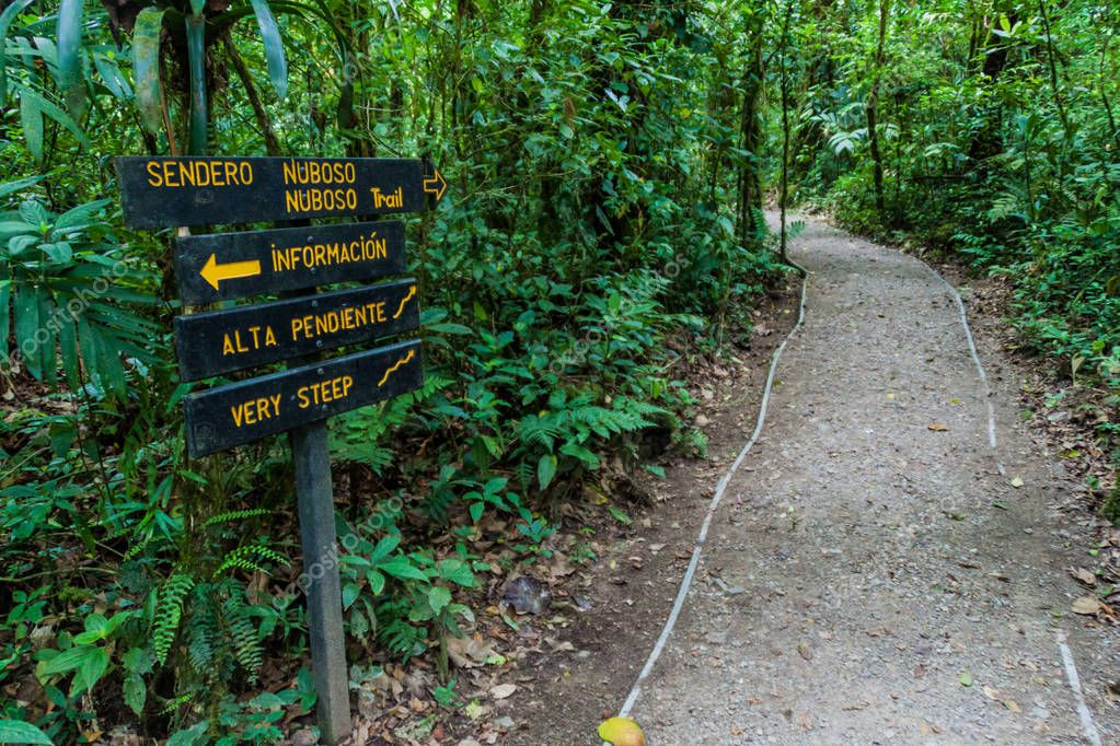 Signs at hiking trails in a cloud forest of Reserva Biologica Bosque Nuboso Monteverde, Costa Rica