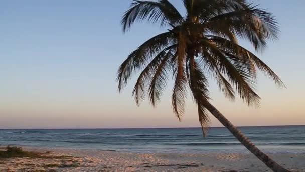 Evening on a beach