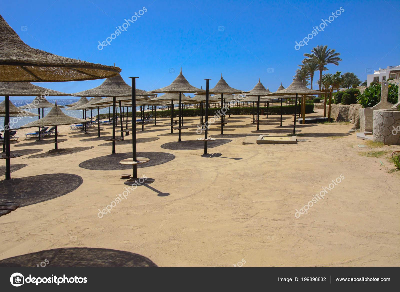 Row Straw Umbrellas Protect Overheating Sunbeds Sandy Beach