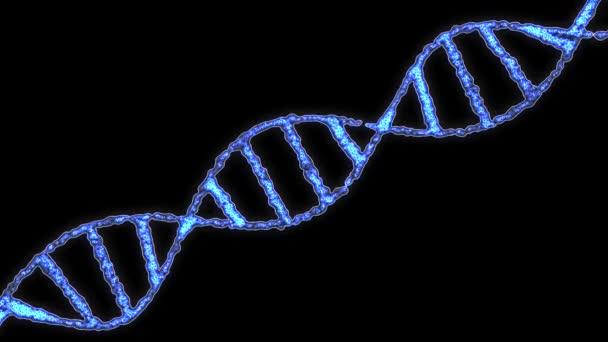 Molekuly DNA spirála otočná animace pozadí nové kvalitní krásné přírodní zdraví Super pěkné stopáže videa