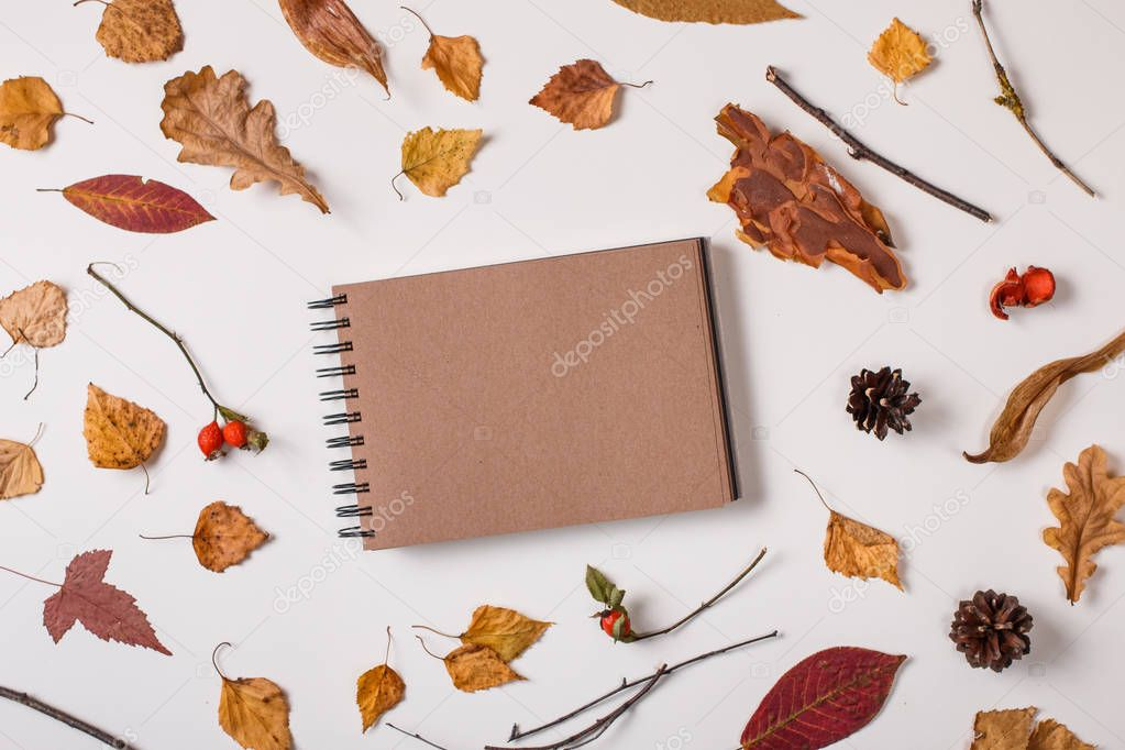 Autumn background: fallen leaves, dry plants, blank sketchbook mock up with brown craft paper on white background. Top view. Flat lay.