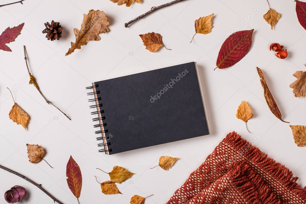 Autumn composition: fallen leaves, dry plants. scarf, notebook mock up with black paper on white background. Top view. Flat lay.