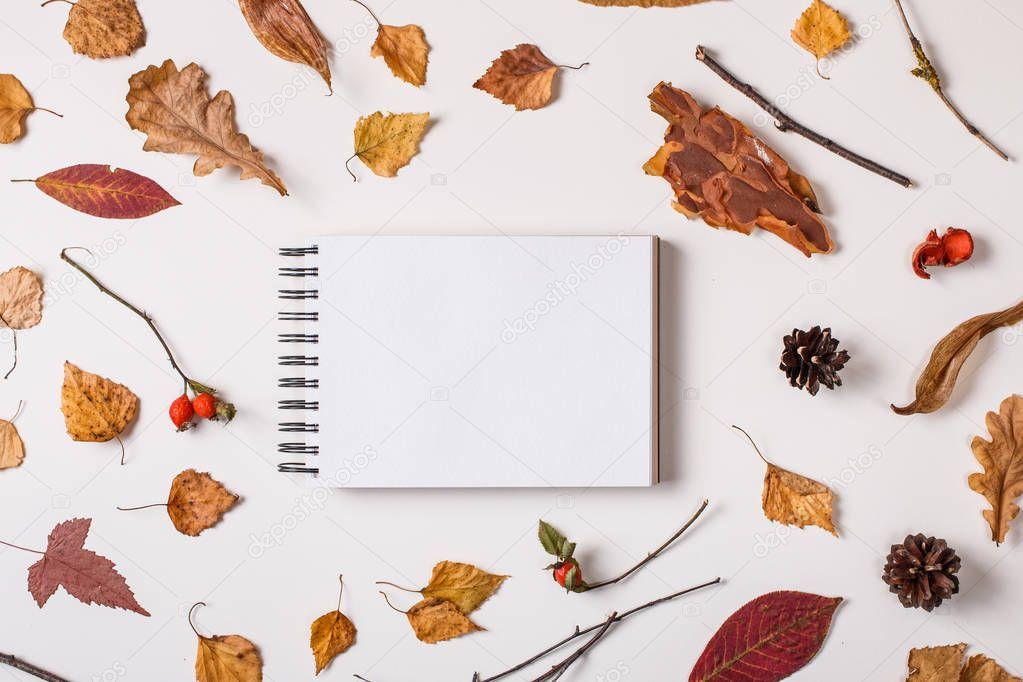 Autumn background: fallen leaves, dry plants, blank sketchbook mock up with white paper on white. Top view. Flat lay.