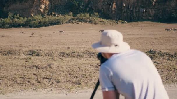 Fotograf nimmt Bilder auf der Kamera des wilden Zebras In der afrikanischen Reserve