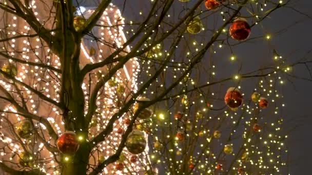 Night Illumination In Christmas With The Garland Square And Balls On The Trees