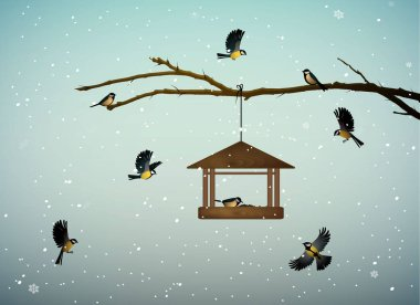 titmouse birds on the tree branch with feeder in the winter season, family of birds in snowy cold whether,