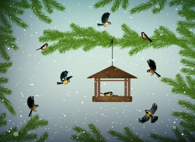 titmouse birds on the pine tree branch with feeder in the winter season, family of birds in snowy cold whether,