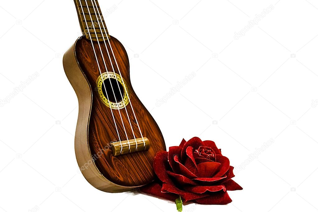 pictured in the photo Acoustic guitar and red rose flower, isolated on white