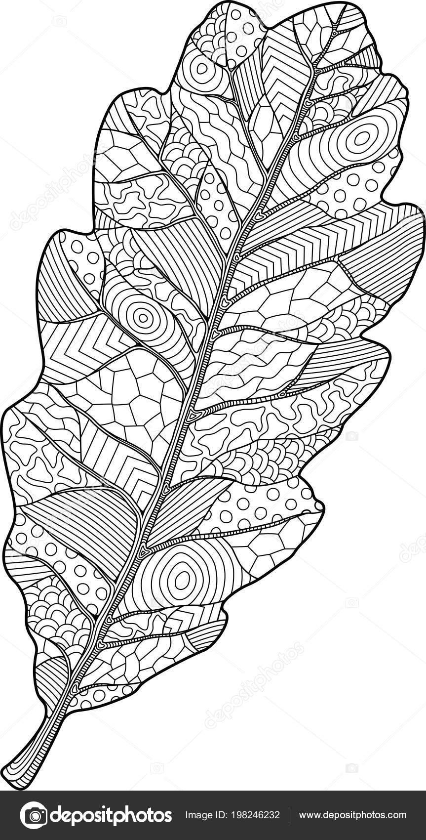 Beyaz Arka Plan üzerinde Dekoratif Meşe Yaprağı Ile Kitap Sayfa