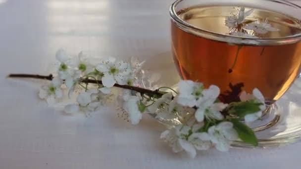 Čaj černý, limetský, zelený a bylinný. Uzdravení, léčivé nápoje. čajový obřad