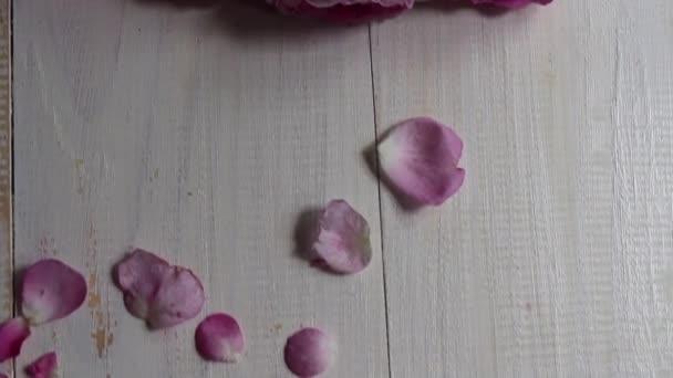 Anyák napi üdvözlőlap-szöveg és virágok. Gyönyörű rózsák terén. Piros rózsa virágzik a kertben. Fúj a szél, a virágok mozognak