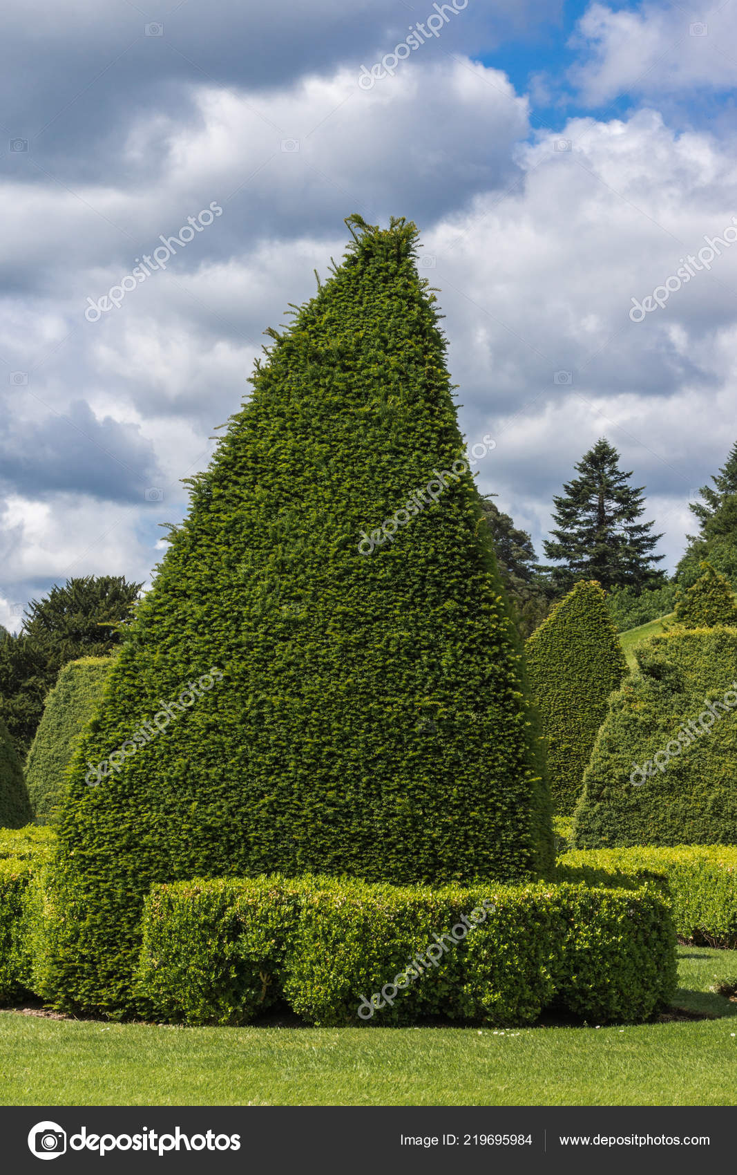 2d92651286 Holm Drumlanrig Scotland June 2012 Scene Garden Green Hedges Cut — Stock  Photo