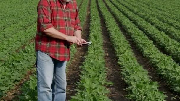 Zemědělec v pozadí počítá s dolarovou bankovkami a psaním do mobilního telefonu s zeleně kultivované sójové pole
