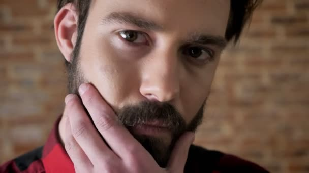 Young attractive serious man is touching his beard, watching at camera, brick background