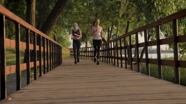 Two young beautiful female runners with ponytails jogging in park across bridge, weight loss, fitness models running
