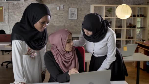 Young muslim womens in hijab discussing project and pointing in laptop, talking about business plan in modern office