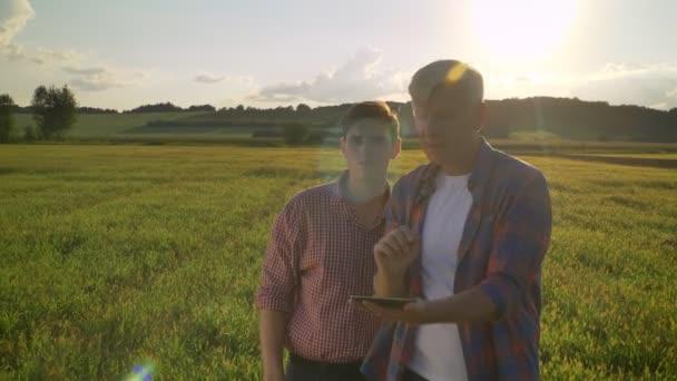 Starý muž plánování nový projekt s dospělého syna, vysvětluje a ukazuje na pšeničné pole vpřed, farmář s jeho nástupce mluví, západ slunce