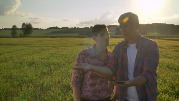 Old farmer discussing new project with his successor and holding tablet, standing on wheat field during beautiful sunset in background