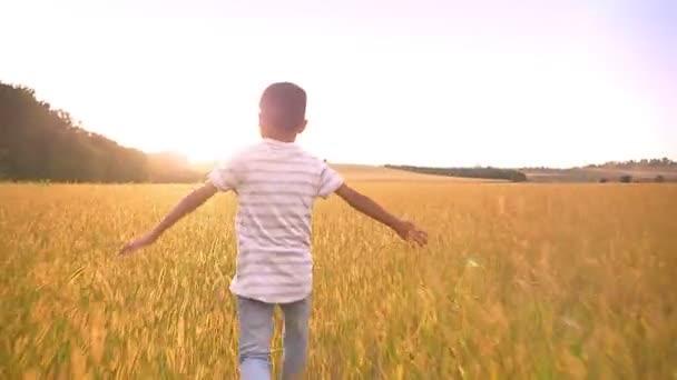 Super malý chlapec hraje a běží přes obří pšeničné pole