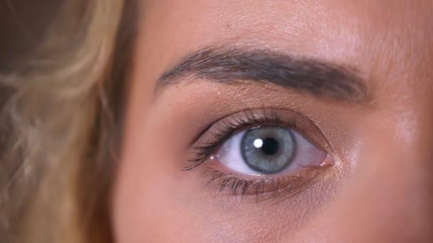 Při pohledu přímo na kameru krytý uvolnil detail blikající velké modré oko kavkazské ženy,