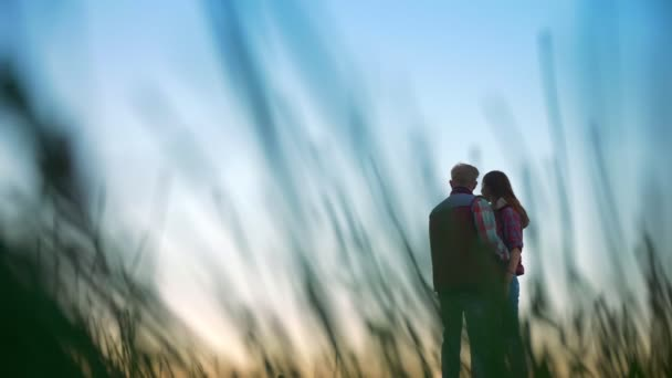 Amazing footage of couple boyfriend and his girlfriend standing far and looking ahead in high grass, relaxing together, beautiful illustration