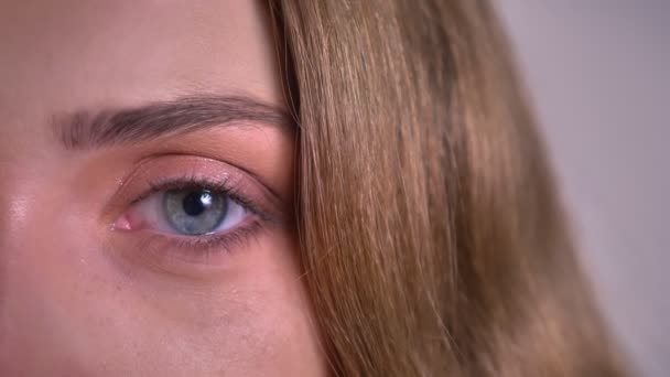 Nahaufnahme eines Augenporträts der blonden kaukasischen jungen Frau, die ruhig und direkt in die Kamera auf grauem Hintergrund schaut.