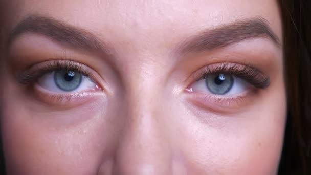 Nahaufnahme Porträt der schönen jungen kaukasischen weiblichen blauen Augen, die direkt in die Kamera schauen