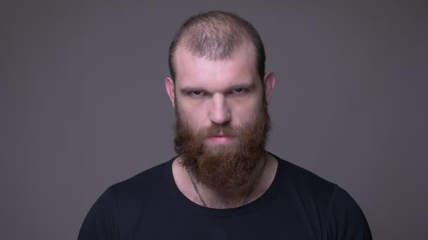 Střelili si dospělého krásného svalnatého bělošského muže s plnovousem, který se dívá na kameru s pozadím izolovaným na šedé