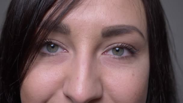 Closeup portrait of adult caucasian brunette female face with eyes looking at camera with smiling facial expression with background isolated on gray