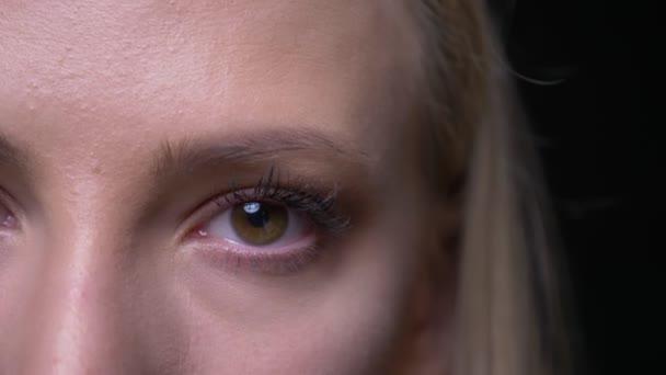 Closeup félig arcképe fiatal csinos szőke nő arcát szemmel nézett kamera háttérrel izolált fekete