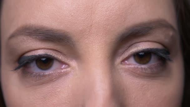 Closeup portréja felnőtt vonzó kaukázusi női arc gyönyörű szem smink nézi kamera háttérrel izolált szürke