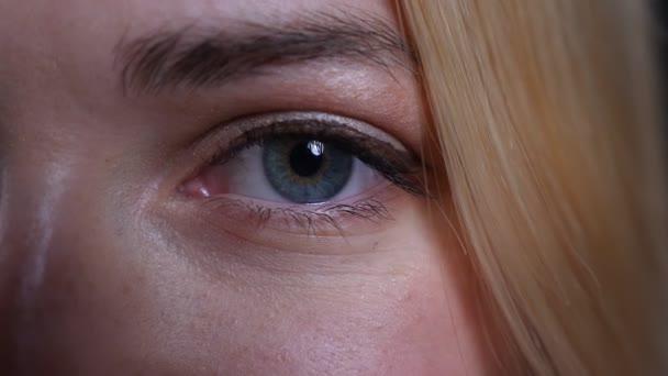Vértes fél arca lő a fiatal csinos szőke kaukázusi nő, kék szemmel keres egyenesen a kamera