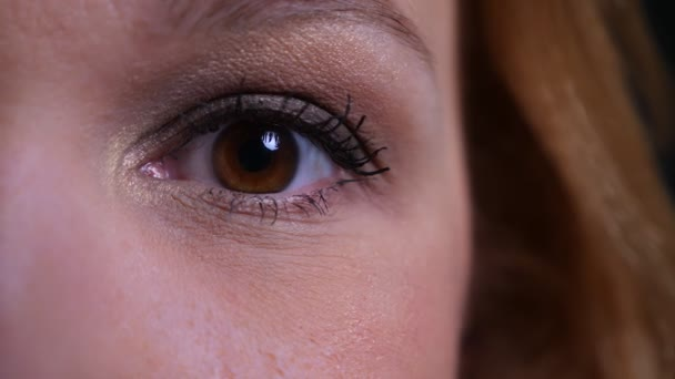 Closeup half face portrait of adult attractive caucasian womans eye looking straight at camera