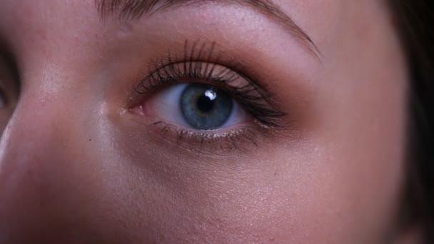 Vértes fél arca portré fiatal csinos kaukázusi barna nő keres egyenesen a kamera
