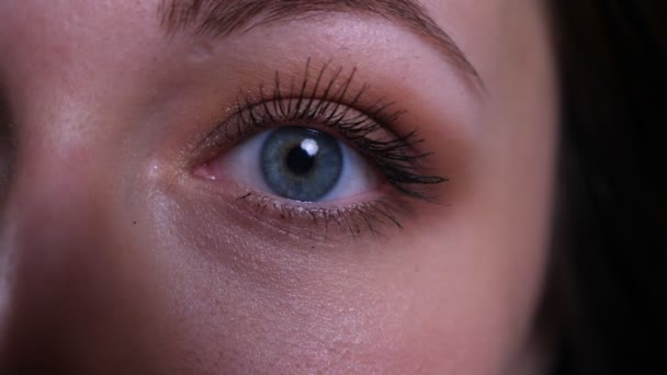 Closeup half face portrait of young pretty caucasian brunette womans eye looking straight at camera