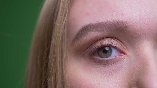Halbgesicht Porträt der hübschen Ingwermädchen schaut angenehm in die Kamera auf grünem Chromgrund.