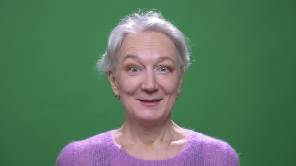 Gray haired granny in violet sweater showing amusement and happiness isolated on green chromakey background.