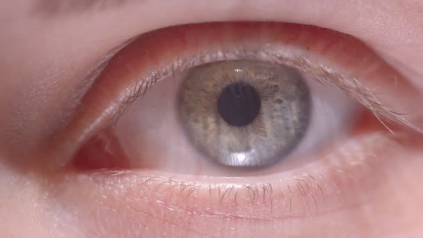Close-up shoot of caucasian person with greenish eyes blinking fastly watching attentively into camera.