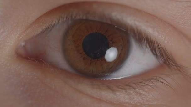 Close-up shoot of greenish eye with the reflection of lamp circling around.