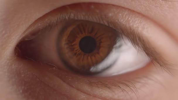 Nahaufnahme eines grünlichen Auges mit der Reflexion und dem Fackeln einer Lampe, die die Beleuchtung verändert.