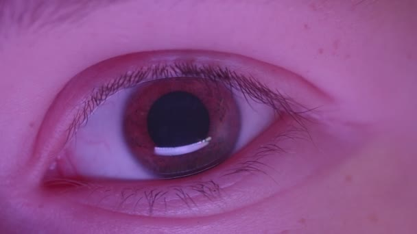 Close-up shoot of l eye watching fixedly with reflection of violet lamp in it.